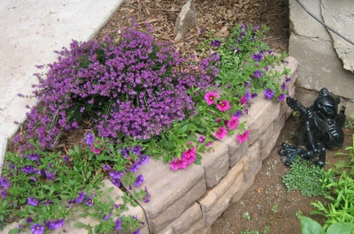 Heathers_garden