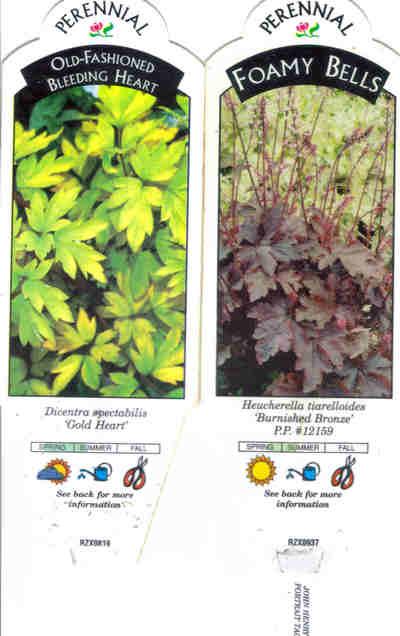 Plant_tags